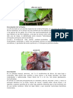 Plantas y Animales en Peligro de Extinción