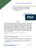 periferia urbana e efeito territorio.pdf