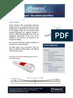 DShapedSidePolishedFibersV2_01405.pdf