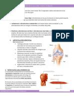 3_resumen Musculos Del Cuerpo Humano