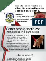 Influencia de los métodos de insensibilización o aturdimiento (1).pptx