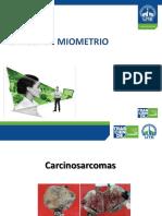 Cancer de Miometrio