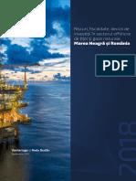 Riscuri, fiscalitate, decizii de investiții în sectorul offshore de țiței și gaze naturale. Marea Neagră și România