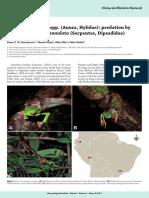 Leptodeira annulata.pdf