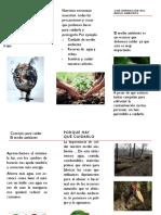 Publicacion de Medio Ambiente