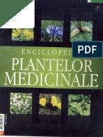 Enciclopedia Plantelor Medicinale - Femeia de Azi