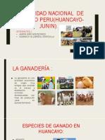 La Realidad Nacional de Nuestro Peru(Huancayo-junin)