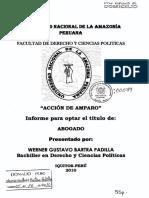 TESIS ACCIÓN DE AMPARO