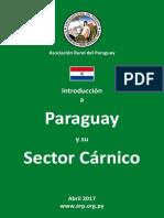 Paraguay y El Sector Carnico