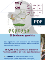 BIOL024 Clase 19 Herencia 1