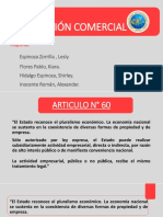 Articulo N60