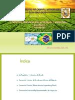 Exportacion de Brasil y Argentina