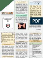 DMARDs flyer-2.pdf