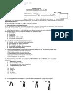 prueba II medio mitosis meiosis (1).docx