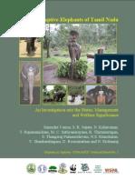 5 TR Tamil Nadu Elephants a4