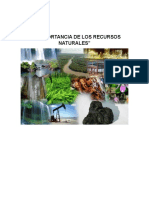 La Importancia de Los Recursos Naturales