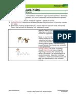 Bio Notes 14.3.2 Imprinting and Innate Behavior