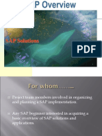 SAP ppt2