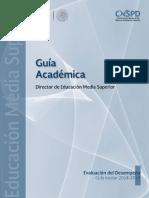 Guia Academica DIR EMS