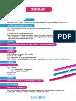 Cronograma de actividades Córdoba Rosa