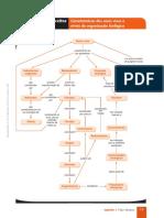 Mapa cap.01 BIO.pdf