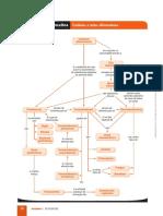 Mapa cap.02 BIO.pdf