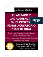 El Amparo y Las Audiencias en El Proceso Penal Acusatorio y Oral