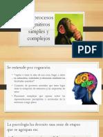Los Procesos Cognitivos Simples y Complejos