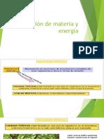 Circulación de materia y energía.pptx