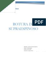 informe fisioterapia.docx