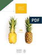 Potencial-Pi_a.pdf