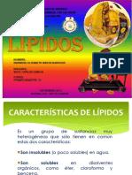 lipidos-131210234420-phpapp02