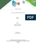 Unidad 3 - Fase 4 - Modelación ambiental en acción - JJCV.pdf