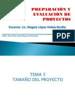 TEMA 5 Tamaño-1.pptx