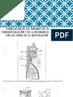 Correlación de los órganos de la fonoarticulación y de la resonancia con las zonas de la articulaciónCorrelación de los órganos de la fonoarticulación y de la resonancia con las zonas de la articululación.pptx