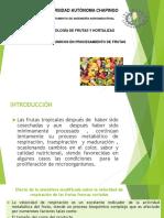 Cambios Quimicos en Precesamiento de Frutas