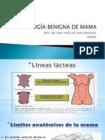 Patologia Mamaria Benigna Sjb (1)