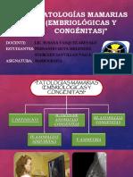 Patologias Mamarias (Embriologicas y Congenitas)