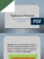 Vigilancia Prenatal