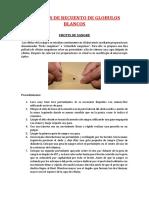 RECUENTO-DE-LEUCOCITOS.docx