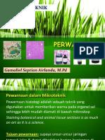 pewarnaan-gama (2).pdf