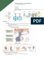 Resumo Endocrinologia