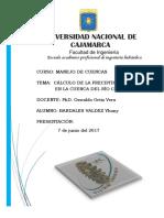 1° informe_ Precipitación media en la cuenca