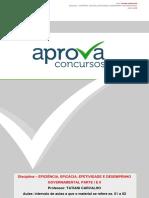 3 Conceitos de Eficiencia Eficacia e Efetividade Aplicados a Administracao Publica Avaliacao e Mensuracao Do Desempenho Governamental Parte II