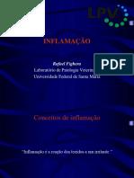Metabolismo Preclinico de Um Agente Anticancer B1 JSR 1,072