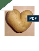Cartofi.docx