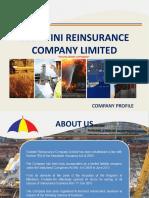 Ezulwini Reinsurance Company Profile