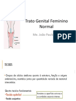 Citologia do Trato Genital Feminino Normal.ppt
