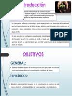 BIOCARBON2.pptx