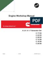 CUMM WSM.pdf-1